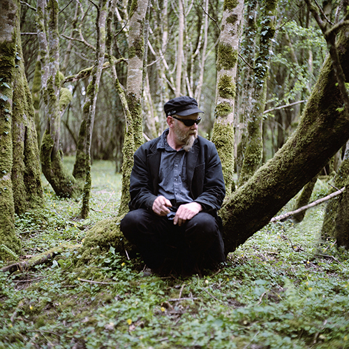 Kelios minutės ramaus vaikščiojimo šio miško takais įsiminė kaip vienos svarbiausių lankantis Airijoje.